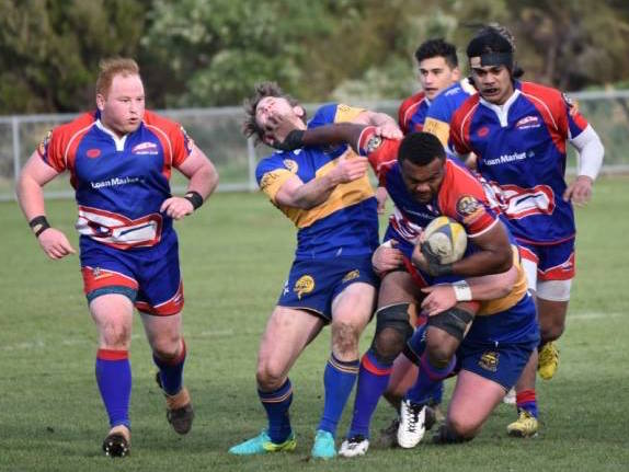 "Harbour Rugby - ""hawks convincing win against Taieri ..."